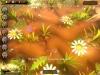 Скачать бесплатно игру война букашек полная версия